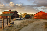 Barn, chicken coops, Shop