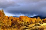 Brooding autumn skies
