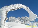 L'hiver, ici en Lorraine et  dans les Vosges
