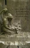 Rotterdam Cemeteries