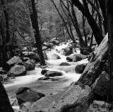 Bridal Creek