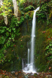Ephemeral Falls, Agness Rd, Curry Co. OR