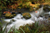 South Fork Creek, Curry Co, OR