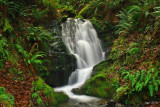 Ephemeral Falls, Agness Rd., Curry Co.