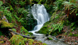 Ephemeral Falls, Agness Rd., Curry Co. OR