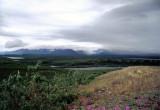 Along Denali Hwy, Alaska