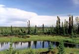 Reflection along Glenn Hwy, Alaska