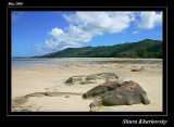 Low Tide of Praslin - Gallery