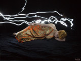 Light Painting - gown sequence number six