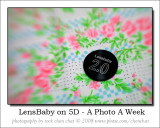 LensBaby Cover