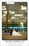Paradise Wedding @ Terminal 3, Changi Airport