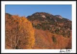Grandfather Mt. Fall Morning