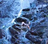 Climbing Bridal Veil