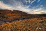 _MG_0604 Peridot Mesa Sunrise