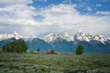 Moulton barn and Teton range