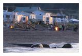 Les feux sur la plage
