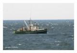 Il y encore des bateaux de pêche en Gaspésie