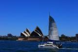 Opera House Milsons Point.jpg