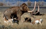 Columbian mammoth (recreation)