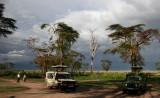 East African Safari: Tanzania