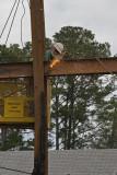 36444 - Workers removing steel beams
