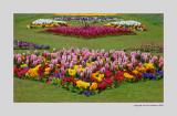 April in Colchester