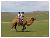 Outer Mongolia 2011