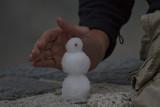 A German couple built this miniature snow man