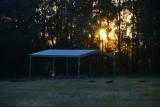Wooglemai - Sunrise on the Oval