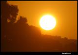 Sun 1.4 million km diameter