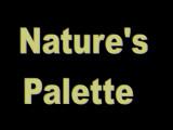 Natures Palette