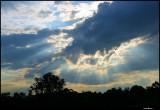 Blue Sunbeams