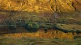Loch Urr Gold