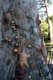 18156 09:27 Day 2 - The Fairies' Tree I