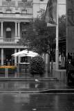 20120201_2014984 Return To Rain (Wed 01 Feb)