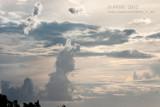 20120316_6772 The Bunny Cloud (Fri 16 Mar)