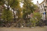 Bomen bruggen en fietsen