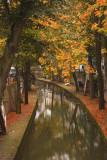 Grachten in herfstkleuren