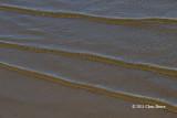 Lakeshore Ripples