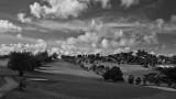cedar valley c c Antigua II