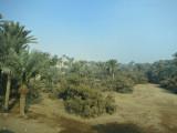 Approaching Desert Sakkara Egypt