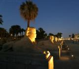Avenue of Sphinxes from Luxor toward Karnak