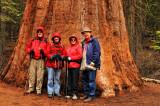 Larry, Margaret Ann, Glynda, Jim & Giant Sequoia