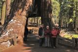 Jim, Glynda, Margaret Ann, & Larry at the California Tree