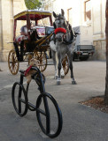 Frimpong in Malta - by Geraldine
