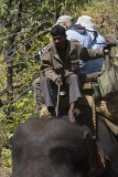Mahat instructs elephant with foot taps