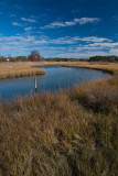 Four Seasons in the Marsh