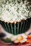 cupcake ...