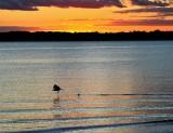 Touchdown Sunset