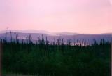 Taylor Highway at dusk